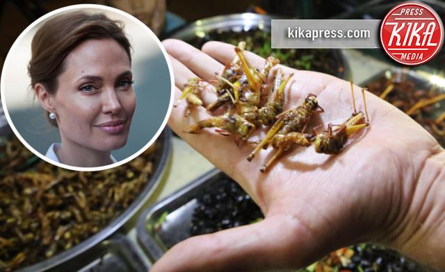 Angelina Jolie - Los Angeles - 05-11-2015 - Angelina Jolie cuoca d'insetti per la troupe della BBC