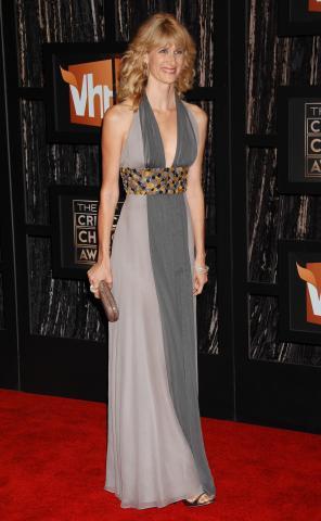 Laura Dern - Santa Monica - 08-01-2009 - Laura Dern: la nomination è una sorpresa, lo stile no