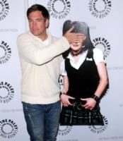 Michael Weatherly - Beverly Hills - 01-03-2010 - Michael Weatherly di Ncis rischia di dover pagare i danni per un incidente di un anno fa