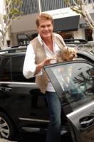 David Hasselhoff - Los Angeles - 27-05-2010 - David Hasselhoff torna alla soap opera che l'ha lanciato