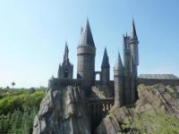 Harry Potter - Orlando - 04-06-2010 - Harry Potter batte il suo record al botteghino prima del Ringraziamento