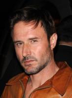 David Arquette - Los Angeles - 17-10-2010 - David Arquette si scusa e ricomincia a dare dettagli sul rapporto con Courteney Cox