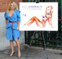 Pamela Anderson - Londra - 24-10-2010 - Le celebrità sono i veri guardiani… dell'ambiente!