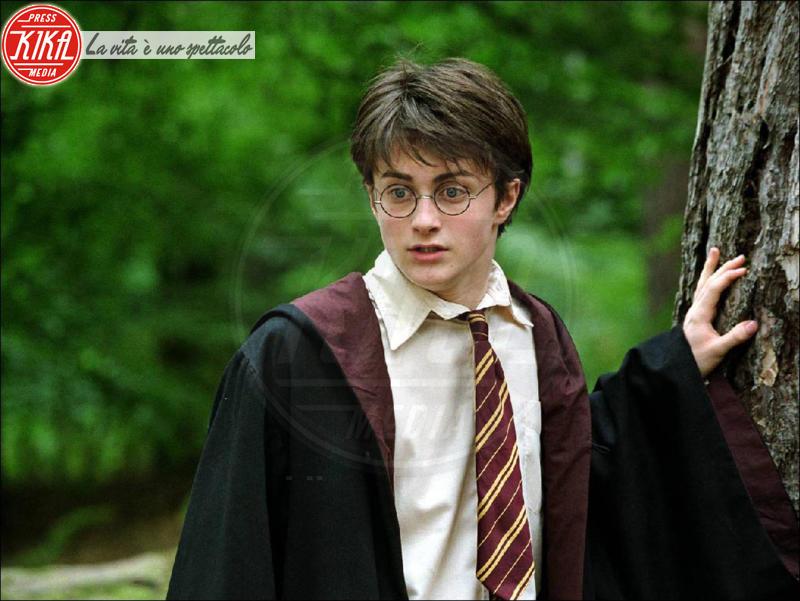 Harry Potter - Hollywood - 12-02-2007 - Harry Potter, Daniel Radcliffe apre le porte a un suo ritorno