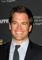 Michael Weatherly - Beverly Hills - 15-01-2011 - Michael Weatherly di Ncis rischia di dover pagare i danni per un incidente di un anno fa