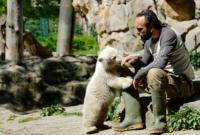 Thomas Doerflein, Knut - Berlino - 19-03-2011 - E' morta la star dello zoo di Berlino: l'orso Knut