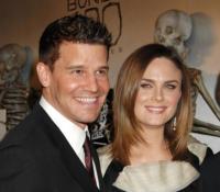 Emily Deschanel, David Boreanaz - Los Angeles - 07-04-2010 - Emily Deschanel e' incinta