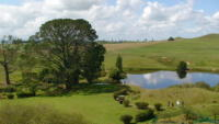 Hobbiton - Nuova Zelanda - 11-07-2011 - Nuova Zelanda: il set del Signore degli Anelli diventa meta turistica