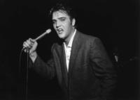 Elvis Presley - Los Angeles - 13-07-2011 - Baz Luhrmann ha deciso, il ruolo di Elvis Presley a un outsider