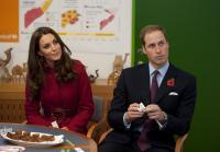 Principe William, Kate Middleton - Copenhagen - 02-11-2011 - Kate e William rinunciano ad andare a sciare in periodo di recessione