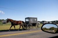 Calesse - Dayton - 04-10-2009 - Ritorno al futuro: l'Antico Ordine dei Mennoniti