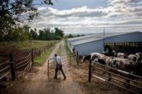 James Rhodes - Dayton - 29-09-2009 - Ritorno al futuro: l'Antico Ordine dei Mennoniti