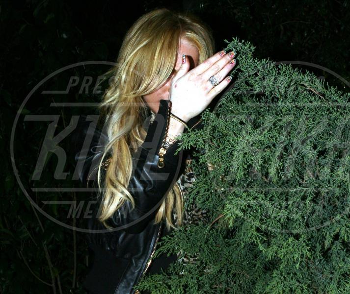 Lindsay Lohan - Hollywood - 30-03-2008 - La foca grigia che si sente una star