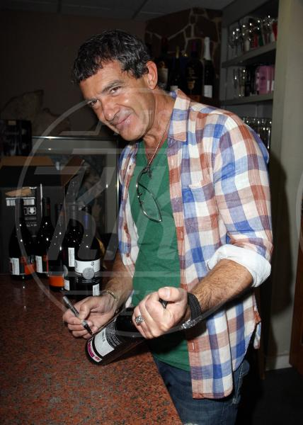 Antonio Banderas - Miami - 25-02-2012 - Camilla di Cornovaglia, in vino veritas?