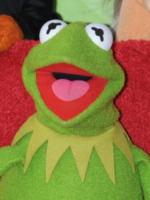 Kermit - Hollywood - 20-03-2012 - Sale l'attesa per il debutto in Italia di The Muppets - la serie