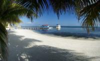 Palm Tree Beach 7 - Belize - 26-03-2012 - Belize