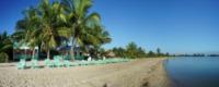Palm Trees 2 - Beachfront Hotel - Belize - 28-03-2012 - Belize