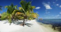 Palm Tree Beach 5 - Belize - 26-03-2012 - Belize