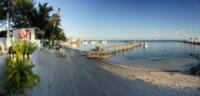 Palm Tree Beach 6 - Belize - 26-03-2012 - Belize