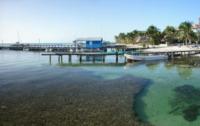 Piers - Caribbean Clear Water - Belize - 26-03-2012 - Belize