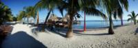 Palm Tree Beach6 - Belize - 26-03-2012 - Belize