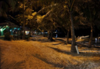 Palm Tree Beach at Night - Belize - 26-03-2012 - Belize
