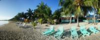 Palm Trees - Beachfront Hotel - Belize - 28-03-2012 - Belize