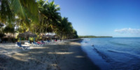 Palm Trees - Lounge Chairs on Isolated Beach - Repubblica Dominicana - 28-03-2012 - Repubblica Dominicana