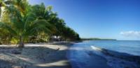 Palm Trees on Isolated Beach 2 - Repubblica Dominicana - 28-03-2012 - Repubblica Dominicana