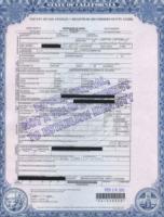 Whitney Houston - Los Angeles - 16-02-2012 - Scandalo polizia: apprezzamenti al cadavere di Whitney Houston