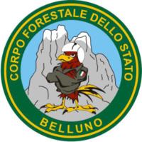 FORESTALE ELICOTTERISTI BELLUNO - Belluno - 24-03-2009 - Gli elicotteristi della forestale entrano in azione