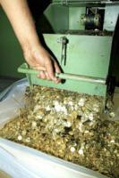 Zecca - Roma - 04-07-2012 - Zecca di Stato: viaggio nel luogo in cui nascono i nostri soldi