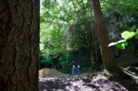 16-07-2012 - L'eremo di Camaldoli compie mille anni