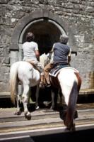 Monastero di Camaldoli - 16-07-2012 - L'eremo di Camaldoli compie mille anni