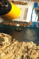 Costa Concordia - Isola del Giglio - 23-01-2012 - Costa Crociere licenzia il comandante Francesco Schettino