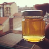 """Torino - 07-11-2012 - """"Le api? Vivono meglio in città"""""""