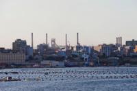 Porto Taranto - Taranto - 08-08-2012 - Ilva di Taranto, occupati gli uffici della direzione
