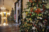 Washington - 28-11-2012 - Michelle Obama inaugura il Natale alla Casa Bianca