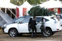 Halle Berry - Beverly Hills - 07-12-2010 - Star come noi: si corre a comprare l'albero di Natale