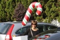 Lisa Rinna - Los Angeles - 15-12-2009 - Star come noi: si corre a comprare l'albero di Natale