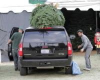SUV - Beverly Hills - 05-12-2009 - Star come noi: si corre a comprare l'albero di Natale