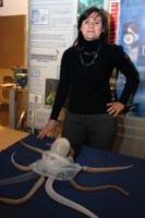Robot Octopus, Cecilia Laschi - Livorno - 11-12-2012 - Ecco Octopus: da Livorno a Londra, esplorerà i fondali marini