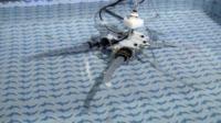 Robot Octopus - Livorno - 11-12-2012 - Ecco Octopus: da Livorno a Londra, esplorerà i fondali marini