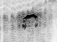 """Deep Explorer - 12-12-2012 - """"Ho visto il mostro del lago di Garda"""""""