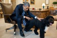 Barack Obama - Washington - 21-06-2012 - Time: Barack Obama eletto Person of the year