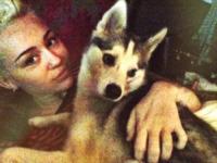 Noah Cyrus, Miley Cyrus - Los Angeles - 09-01-2013 - Dillo con un Tweet: la Santarelli sexy, la Tatangelo famigliare