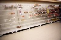 Tempesta Nemo - Boston - 08-02-2013 - Allerta neve: in Virginia è stato d'emergenza