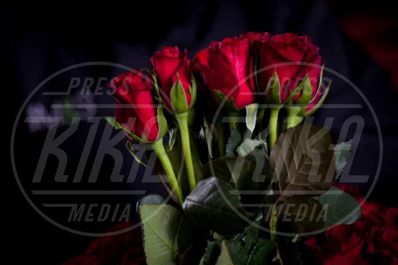 11-02-2013 - Perchè proprio le rose rosse per San Valentino?