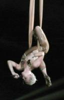 Pink - Orlando - 24-02-2013 - Billboard incorona Pink come Donna dell'anno