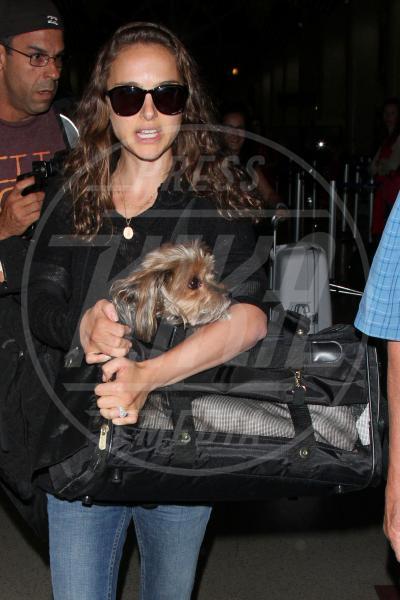 Natalie Portman - Los Angeles - 29-07-2012 - Il cagnetto, dove lo metto? Fai come le celebs!